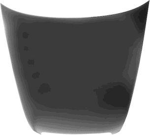 Capot-moteur - VAN WEZEL - 0318660