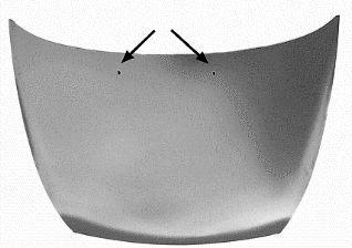 Capot-moteur - VAN WEZEL - 1865760
