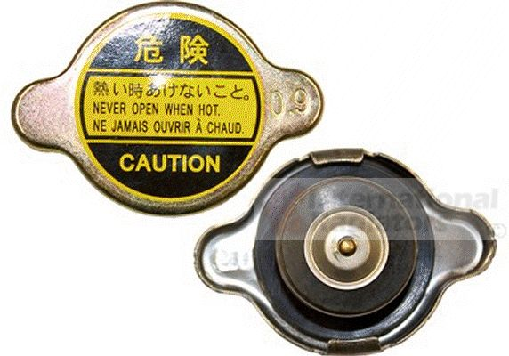 Bouchon de radiateur - VAN WEZEL - 99000011